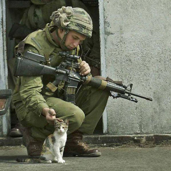 soldiers_share_some_bonding_time_with_cats_640_04