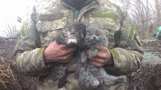 soldiers_share_some_bonding_time_with_cats_640_08