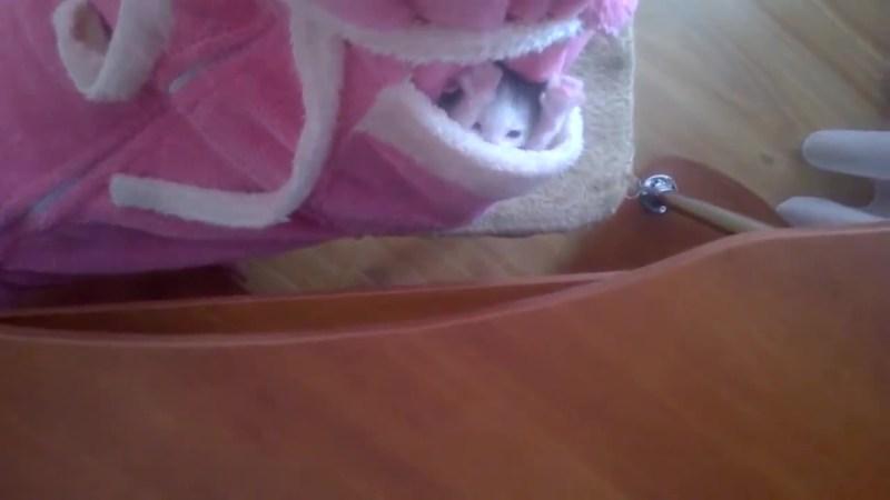 まだちっちゃな赤ちゃん猫。その仕草にキュン03