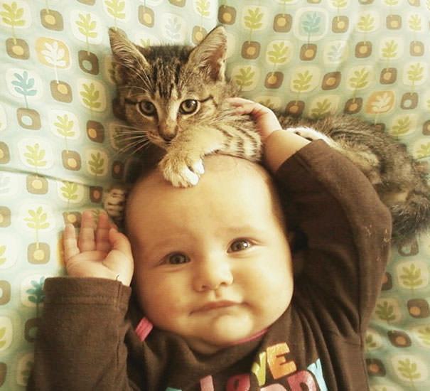 16-ほっこり20枚! 赤ちゃんとネコの仲良しな風景