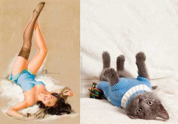 Cats-Vs-Pinup-Models-05
