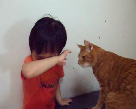 04目の前で泣き止まない少年!ネコさんの取った行動が魔法のような効果を発揮する!