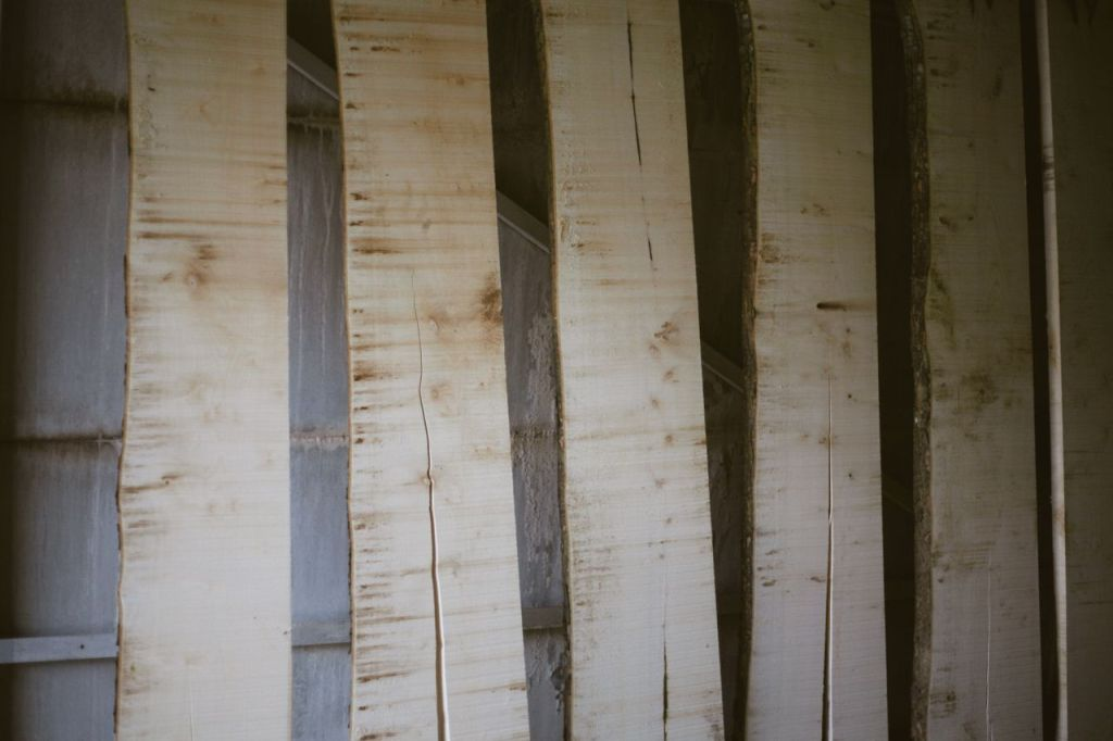 The planks arranged vertically where they will be left to air-dry for a month