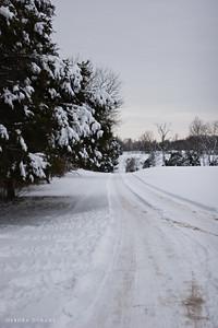snowy driveway at psas