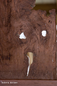 the scream, in wood