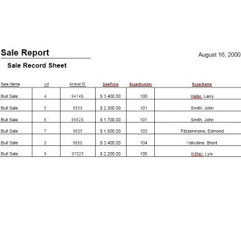 45 Sales Report Templates [Daily, Weekly, Monthly Salesman