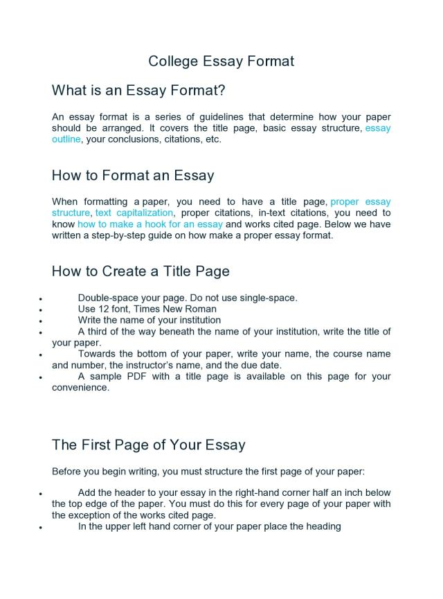 28 College Essay Format Templates & Examples - TemplateArchive