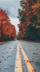 autumn iphone wallpapers plus colors hd templatefor