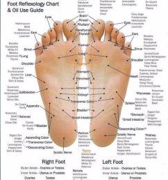 free foot reflexology chart 11 [ 800 x 1036 Pixel ]