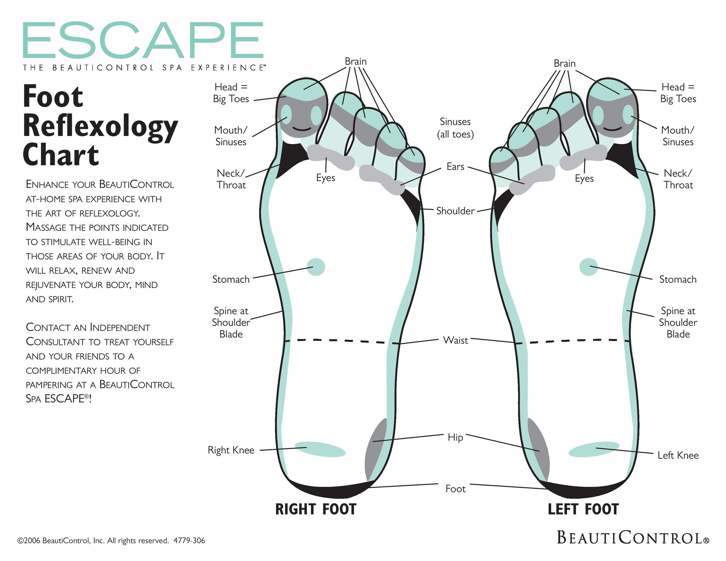 blank foot diagram how to set a table 31 printable reflexology charts and maps template lab