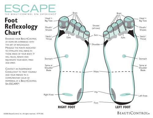 small resolution of 31 printable foot reflexology charts maps template lab blank football pitch diagram blank foot diagram
