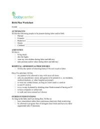 47+ Printable Birth Plan Templates [Birth Plan Checklist