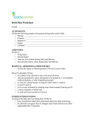 47+ Printable Birth Plan Templates [Birth Plan Checklist ...