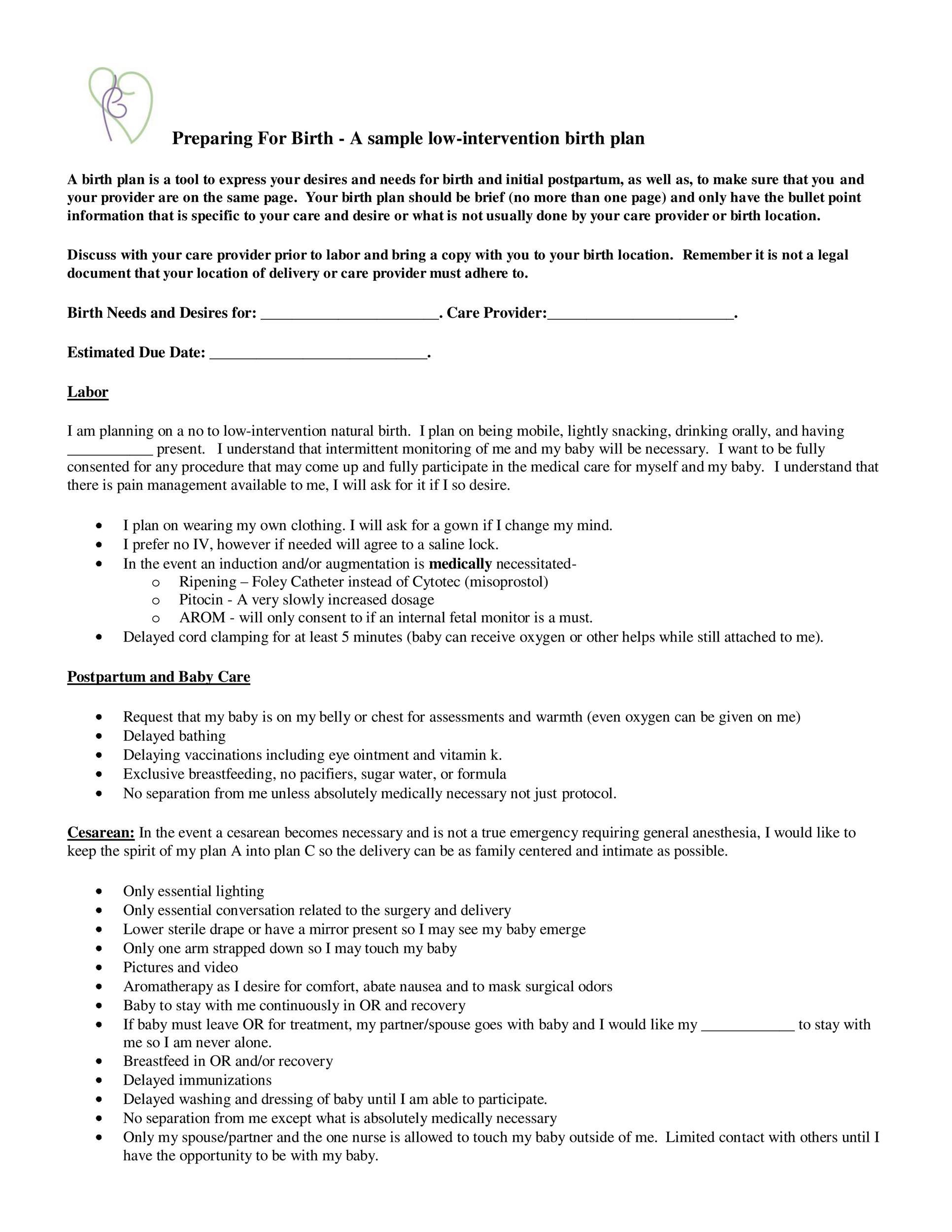 47 Printable Birth Plan Templates Birth Plan Checklist