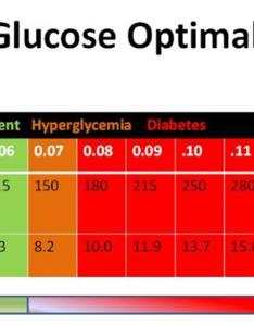 Free blood sugar chart also printable charts normal high low template lab rh templatelab