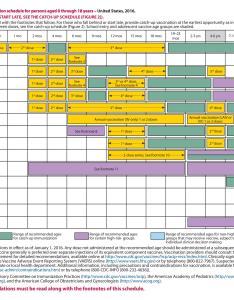 Free vaccination schedule also useful immunization  schedules pdf template lab rh templatelab