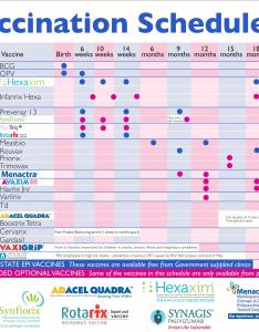 Vaccines chart also people davidjoel rh