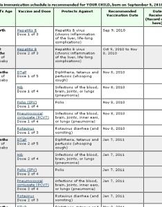 Free vaccination schedule also useful immunization  schedules pdf template lab rh templatelab
