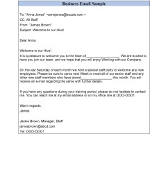free professional email example 18 [ 900 x 1165 Pixel ]