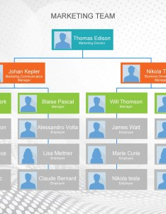 Free organizational chart also templates word excel powerpoint rh templatelab
