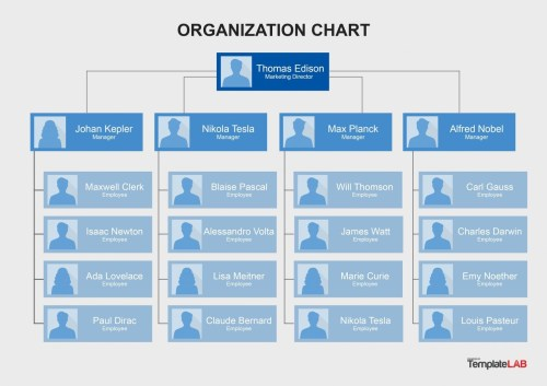 small resolution of free organization chart template 8