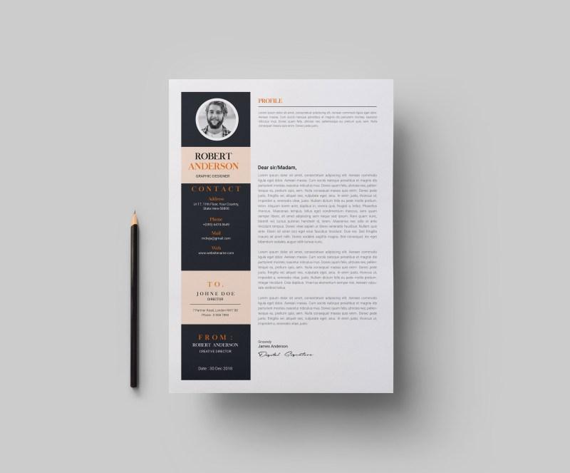 A4 Contemporary CV Template