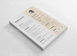 Professional Vector Resume CV Design