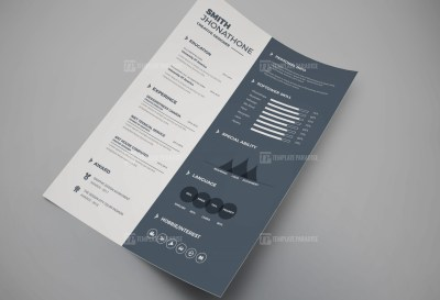 Perfect Resume CV Design
