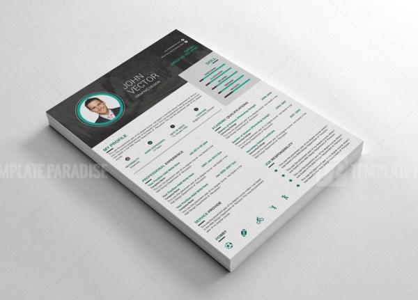 Cool Resume CV Design