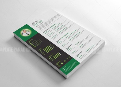 Expert Resume CV Design