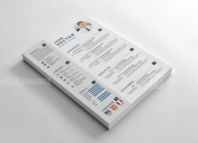 Stylish Vector Resume