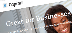 responsive professional wordpress themes for businesses