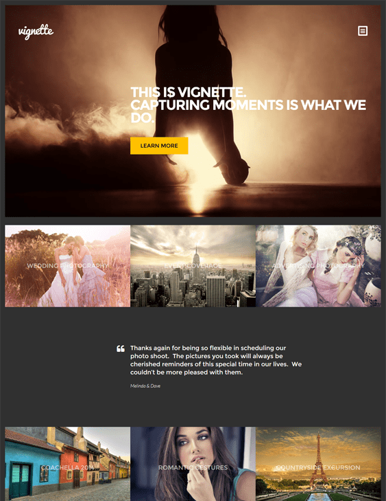 vignette dark wordpress theme