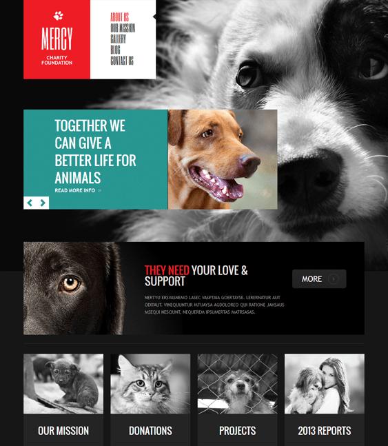 animal charity nonprofit joomla templates