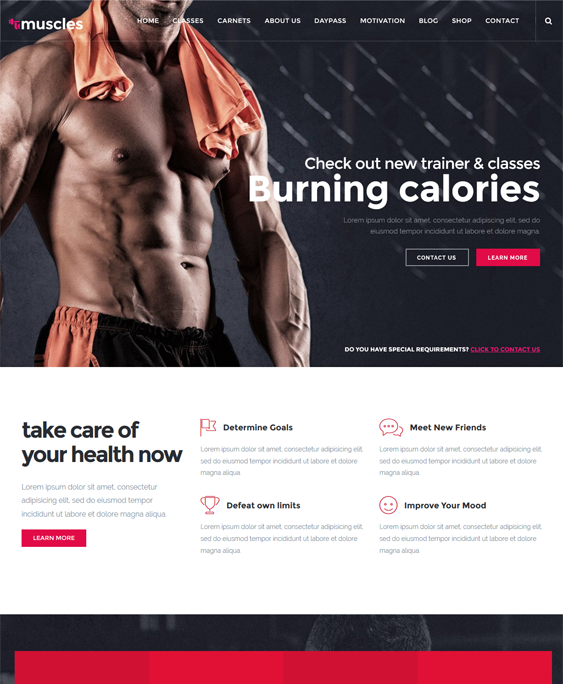 pro gym fitness wordpress themes