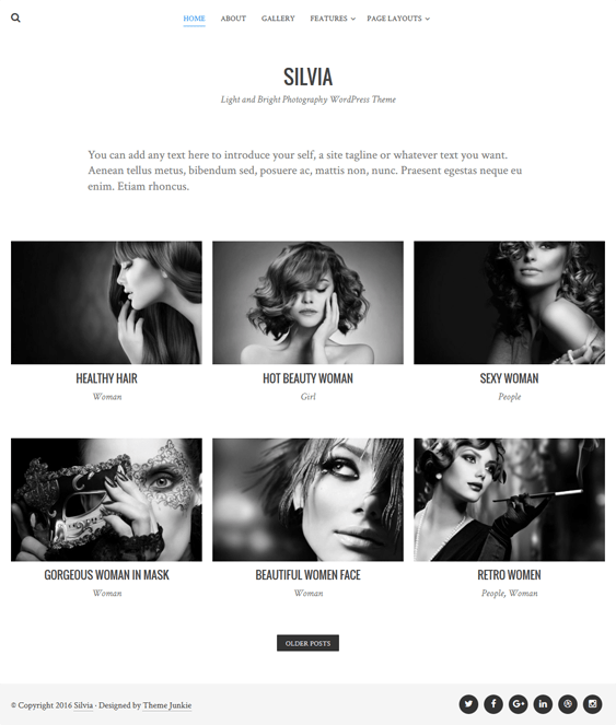 silvia portfolio wordpress themes