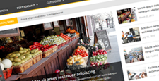 more best magazine news wordpress themes feature