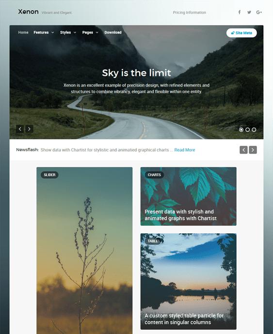 xenon masonry wordpress themes