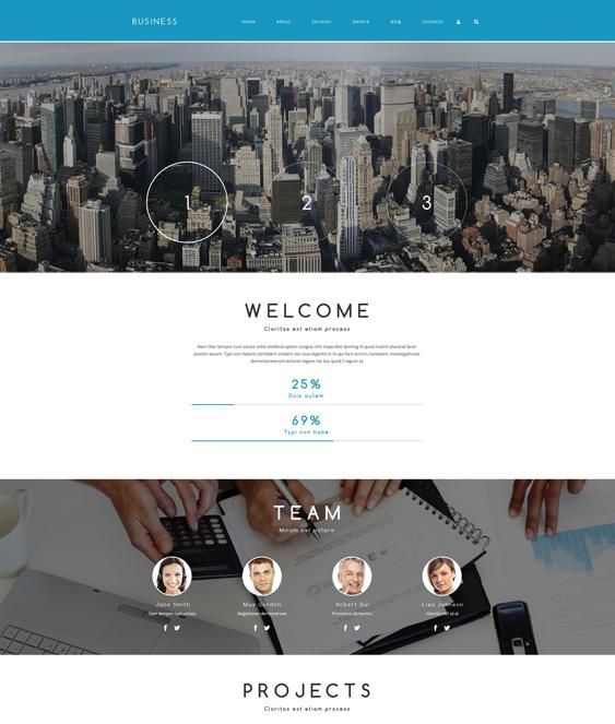 business drupal themes associate