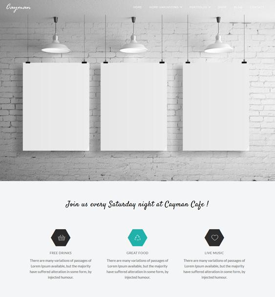 cayman minimal wordpress themes