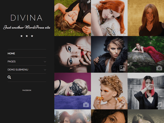 divina free dark wordpress themes