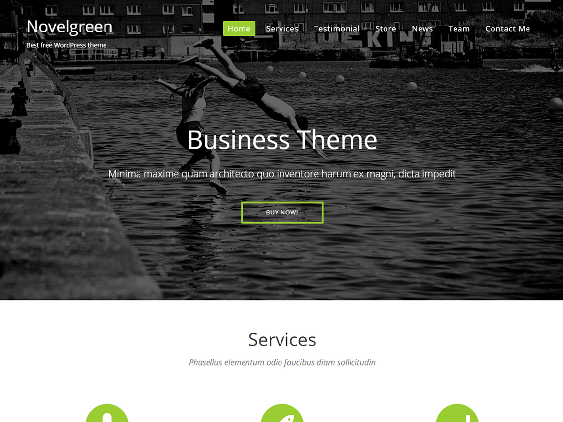 novel green free one page wordpress themes