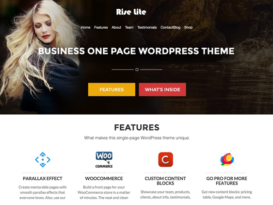 rise lite free one page wordpress themes