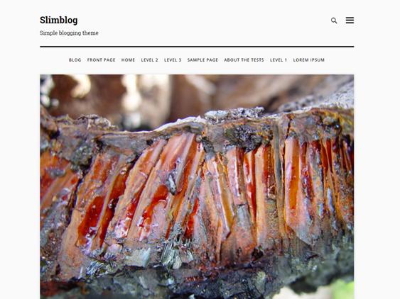 slimblog free minimal wordpress themes