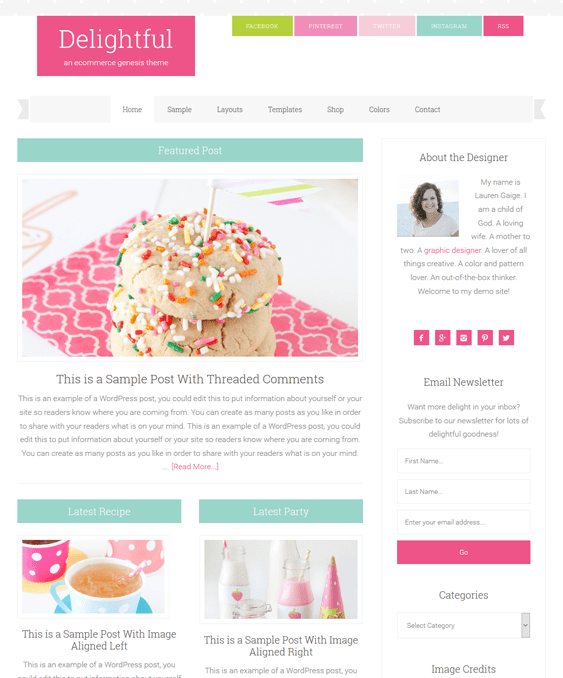 delightful feminine wordpress themes