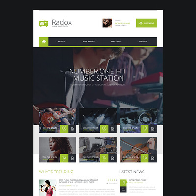 Radio Website Responsive Website Template (Bootstrap template for music websites) Item Picture