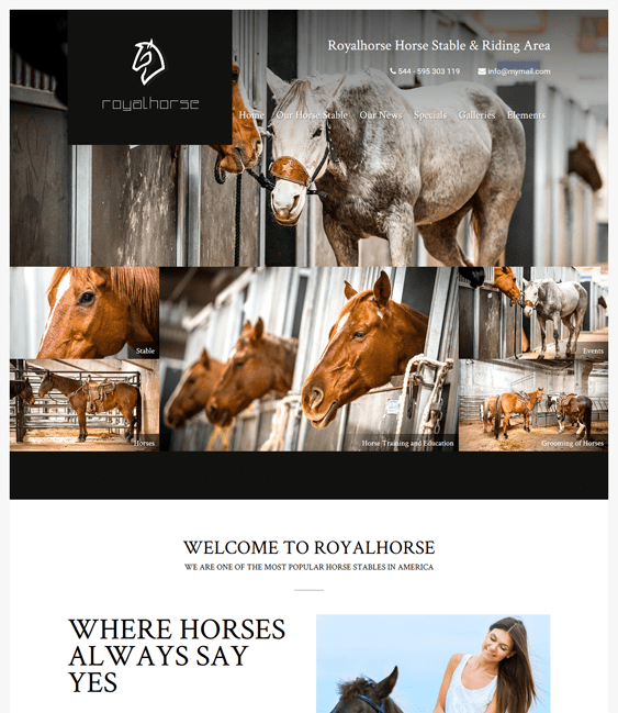 royalhorse sports wordpress themes