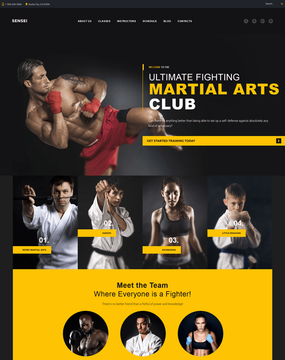 sensei sports wordpress themes