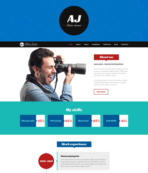 page cv resume wordpress themes