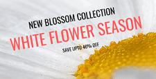 best wordpress themes florists flower shops feature